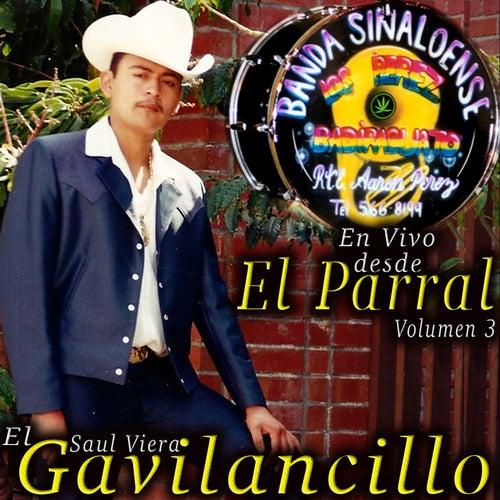 En Vivo Desde El Parral, Vol. 3 by Saul Viera el Gavilancillo