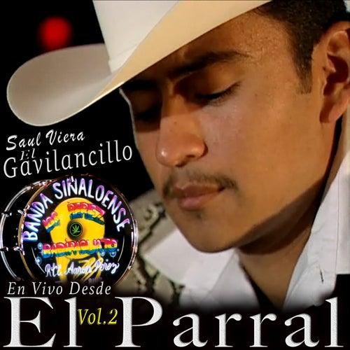 En Vivo Desde El Parral, Vol. 2 by Saul Viera el Gavilancillo