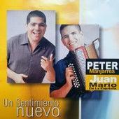 Un Sentimiento Nuevo de Peter Manjarres