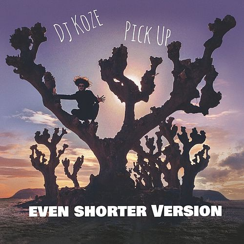 Pick Up (Even Shorter Version) by DJ Koze