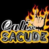 Cali Se Sacude de Various Artists