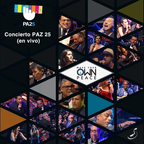 PA25 (En Vivo) von Various Artists