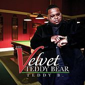 The Velvet Teddy Bear by Teddy B!