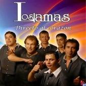 Directo al Corazón de Los Lamas