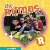 The Ruidos (Sin Tu Amor) de The Ruidos