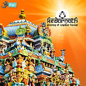 Stories of Wisdom Forest by Kedarnath
