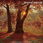 Walter Rinaldi: Piano Concerto, Fugues for Piano and Other Songs - Chopin: Waltzes - Mozart: Turkish March & Sonata Facile - Liszt: La Campanella & Love Dream by Various Artists