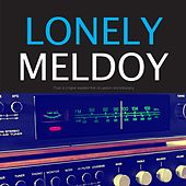 Lonely Melody de Various Artists