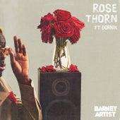 Rose Thorn by Barney Artist