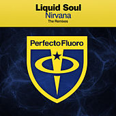 Nirvana (The Remixes) von Liquid Soul