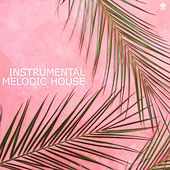 Instrumental Melodic House by Various Artists