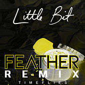 Little Bit (Feather Remix) von Timeflies