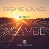 Asambe von Organic Lounge