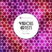Goose Pimples de Various Artists