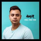 Feel for You de Amir