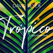 Trópico by David Seyer