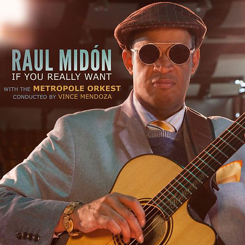 If You Really Want by Raul Midon