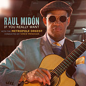 If You Really Want - Single von Raul Midon
