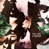Fall Like a Feather de Dan Owen