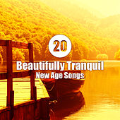 20 Beautifully Tranquil New Age Songs de Various Artists