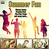 Summer Fun by Various Artists