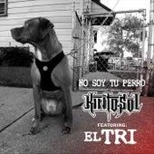 No Soy Tu Perro (feat. El Tri) de Kinto Sol