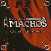La Reunion by Banda Machos