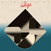 Indigo de Wild Nothing