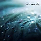 Rain Sounds by Baby Sleep White Noise