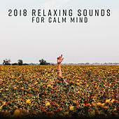 2018 Relaxing Sounds for Calm Mind von Peaceful Piano