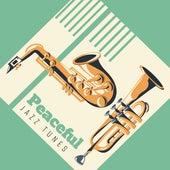 Peaceful Jazz Tunes de Acoustic Hits