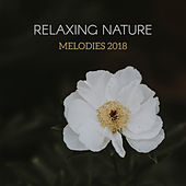 Relaxing Nature Melodies 2018 von Soothing Sounds
