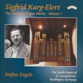 Complete Organ Works of Sigfrid Karg-Elert - Vol 1 - The Organ of St. Georgskirche, Riedlingen, Germany by Stefan Engels