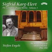 Complete Organ Works of Sigfrid Karg-Elert - Vol 2 - The Skinner Organ of Toledo Cathedral, Ohio, USA by Stefan Engels
