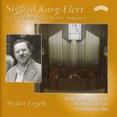 Complete Organ Works of Sigfrid Karg-Elert - Vol 3 - The Steinmeyer Organ of Altoona Cathedral, Pennsylvania, USA by Stefan Engels
