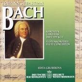 Johann Sebastian Bach - Kantaten & Konzerte de Various Artists