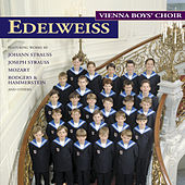 Vienna Boys - Edelweiss by Various Artists
