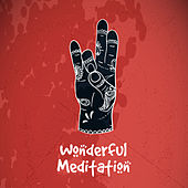 Wonderful Meditation de Nature Sounds Artists