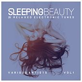 Sleeping Beauty (25 Relaxed Electronic Tunes), Vol. 1 von Various Artists