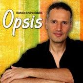 Opsis by Manolis Androulidakis