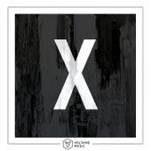 Voltaire Music pres. X de Various Artists