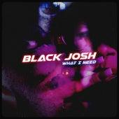 What I Need by Black Josh