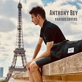 Various Covers de Anthony Bey