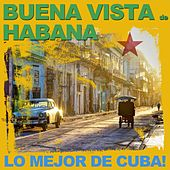 Buena Vista de Habana de Various Artists