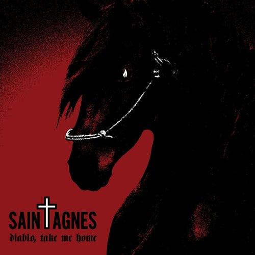 Diablo, Take Me Home by Saint Agnes