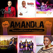 Amandla - Praise and Worship Songs for the Youth de Various Artists