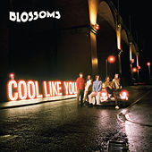 Cool Like You by Blossoms