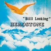 Still Looking by Headstone
