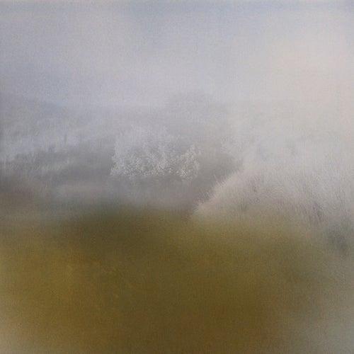 Landings by Richard Skelton