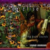 Fur Elise by Shinji Ishihara